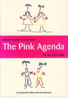 Pink+Agenda+2001